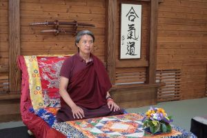 22 апреля 2019 Учения Буддийское воззрение, медитация и поведение с Гьетрулом Джигме Ринпоче в СПб