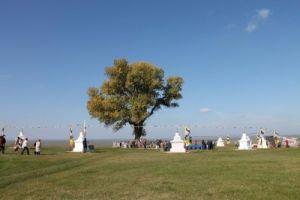 У Одинокого дерева состоится обряд поклонения земле