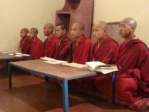 Центр «Джонангпа» рад сообщить об открытии программы обучения «Шедра Джонанг»